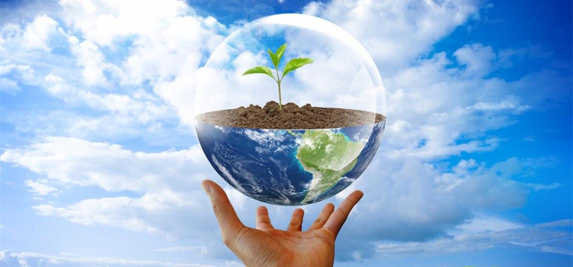 environment non profit organizations