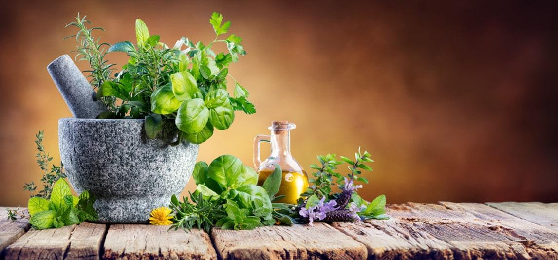 herbs improve health